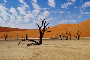 NAMIBIA: Avventura in Namibia in campi tendati o lodge