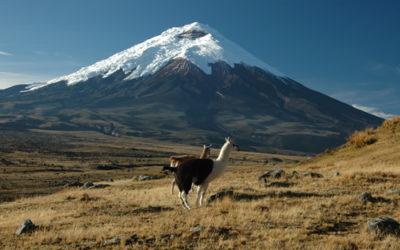 ECUADOR: La Via dei Vulcani 2021