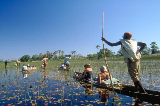 nel Delta dell'Okavango