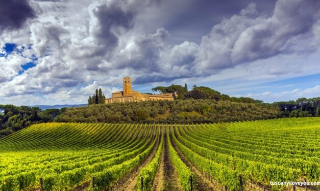 ITALIA: Toscana in bici – La Via Francigena, da Siena a Roma